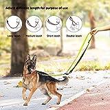 Petcomer Smart 7 in 1 Multifunktions-Hundeleine Heavy Duty Einstellbare Durable Nylon 3M Reflektierende Material Hands Free Walking Training Laufen Leine für 2 Hunde (L:1″ Width,3.6Ft-6.6Ft, Grün) - 4