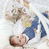 Fehn 160963 3-D-Activity-Nest Rainbow – Besonders weicher Spielbogen mit 5 abnehmbaren Spielzeugen für Babys Spiel & Spaß von Geburt an – Maße: Ø85cm Test