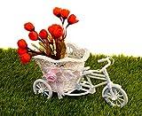 Pindia Plastic Decorative Flower Vase Miniature Tricycle , Small