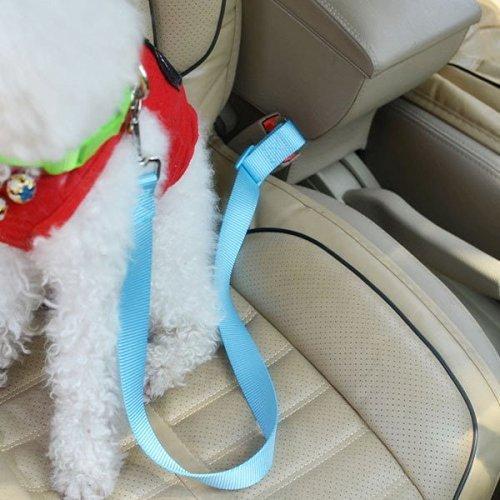 Auto-Sicherheitsgurt Hund Katze, 2er Set Anschnallgurt Adapter, verstellbar 48 bis 70 cm, Farbe Blau - 4