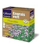 Caillard PFCN18919 Pack de Graines Phacelie 600 m²