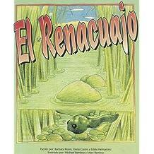 El Renacuajo (Pinata: Stage 2)