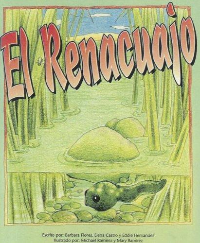 El Renacuajo (Pinata: Stage 2) por Barbara Flores