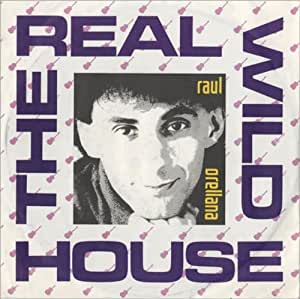 The real wild house radio mix music for Real house music