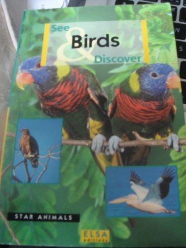 Birds: Animal Pocket Guide