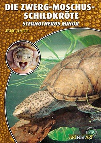 Die Zwerg-Moschusschildkröte: Sternotherus minor (Art für Art)