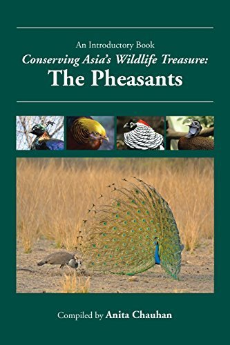 Conserving Asia's Wildlife Treasure: The Pheasants by Chauhan, Anita (2014) Paperback