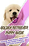 Golden Retriever Puppy Training Guide: Training, Breed History, Appearance, Unique Health Problems, and Social Temperament