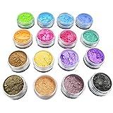 HEALIFTY Healith 16 Stück Glitzerpuder Pigmente Kosmetik Lidschatten Nagellack Puder zufällige Farbe