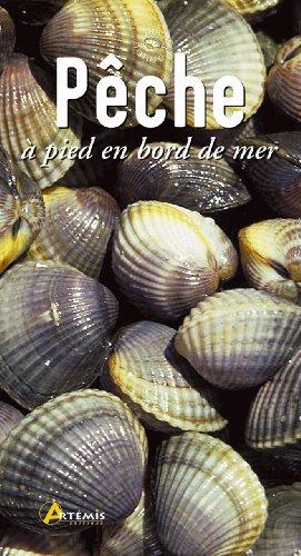 Pêche à pied en bord de mer par Gérard Houdou