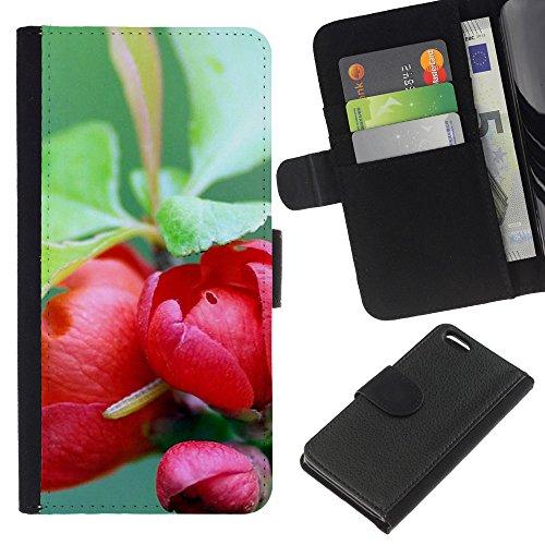 Ihec-Tech / Flip étui Housse en cuir avec des fentes de cartes pour Apple iPhone 5C - Plant Nature Forrest Flower 73