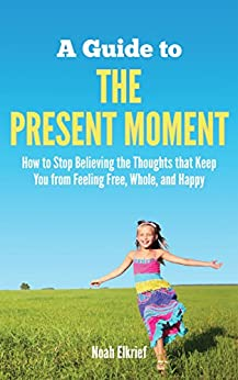 A Guide to The Present Moment by [Elkrief, Noah]