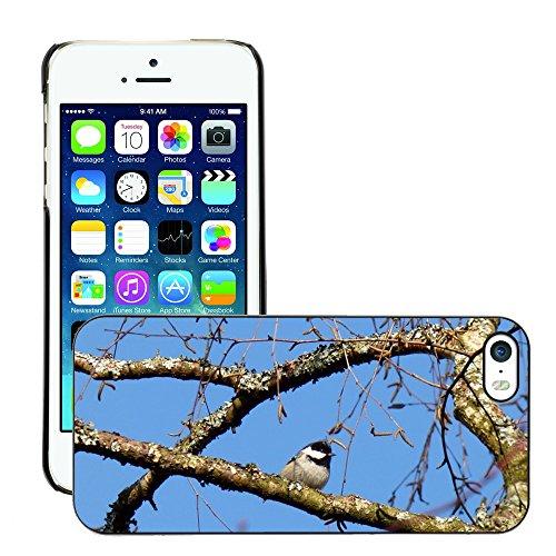 GoGoMobile Bild Hart Handy Schwarz Schutz Case Cover Schale Etui // M00119366 Vogel Luster Cup Zweige Bäume // Apple iPhone 5 5S 5G (Cup Zweig)
