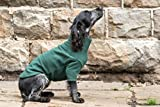 HOTTERdog by Equafleece® Fleece Dog Jumpers - Sizes XS - XL Colours Grape & Green - Keep Your Dog Warm, Dry, and Comfortable (XS, Green)