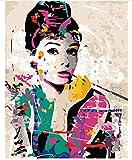 Superlucky Audrey Hepburn Elegante Figur DIY Digitale Malerei von Zahlen Moderne Wandkunst Leinwand Malerei einzigartiges Geschenk Home Decor mit Rahmen 40x50cm
