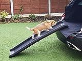 MP Essentials faltbar tragbar Heavy Duty Auto Zugang Hund Rampe für Verletzte, ältere, Behinderte Pets