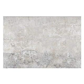 Apalis Shabby Concrete Look Vliestapete, 255x384 cm