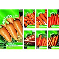 ScoutSeed Coles de Bruselas Contenido F1: Suttons Seeds Vegetable Seed Packets