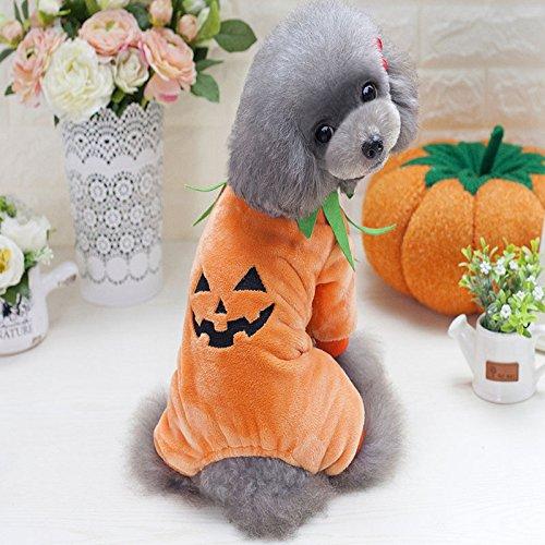 Idepet Haustier-Kostüm für Halloween, Kürbis-Kostüm, Fleece, Jacke, Kleidung für Hunde und Katzen, Welpen, Chihuahua, Verkleidung, Party, Halloween, Weihnachten, Ostern, Festival, Aktivitätskleidung