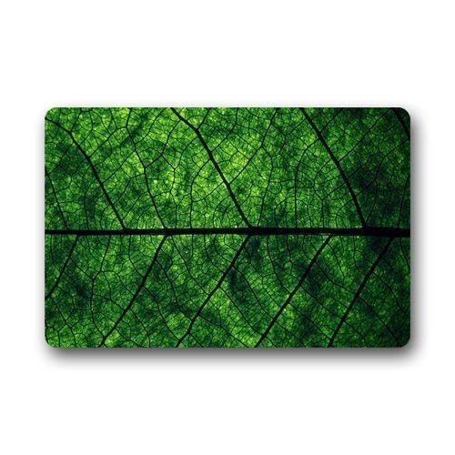 ferfgrg Personalized Evergreen Fashion Lucky Green A Leaf Custom Doormat Manchine-Washable Door Floor Mat/Gate Pad (L23.6