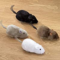 Pull Back Moving Rat Toys for Cat Set of 4PCS Mouse Toys for Kids Multi-Color Fur Mouse Cat Toy ( Dog and cat Toys )