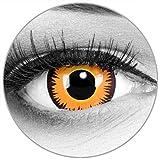 Funnylens Farbige orangene Kontaktlinsen Orange Werewolf - weich ohne Stärke 2er Pack + gratis Behälter – 12 Monatslinsen - perfekt zu Halloween Karneval Fasching oder Fasnacht