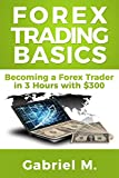 Forex Trading Basics: Become a Forex Trader with $300 and 3 Hours!: Forex Trading Strategy (English Edition)