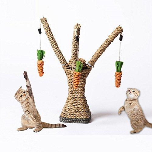 K&C Interaktive Katze Spielzeug Katze Activity Center mit hängenden Karotten Cat Craft Scratcher