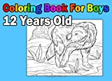 Coloring Book For Boys 12 Years Old - Best Reviews Guide
