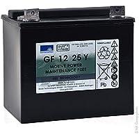 GNB Sonnenschein GF-Y - Batería plomo sellada gel SONNENSCHEIN GF-Y GF12025YG 12V 25Ah G6