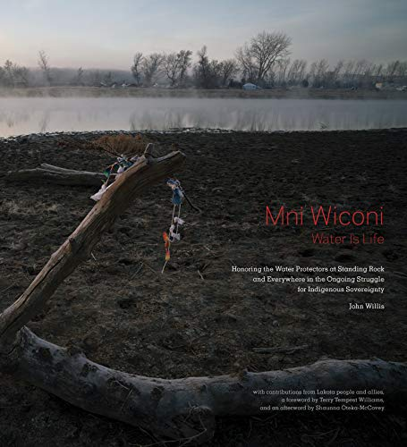 Mni Wiconi/Water Is Life: Honoring the Water Protectors at Standing Rock and Everywhere in the Ongoing Struggle for Indigenous Sovereignty