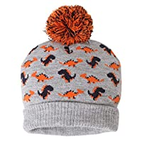 ANIMQUE Baby Kids Beanie Hat Winter 6-12 Months Boys Girls Crochet Cap Warm Cartoon Dinosaur Grey, S