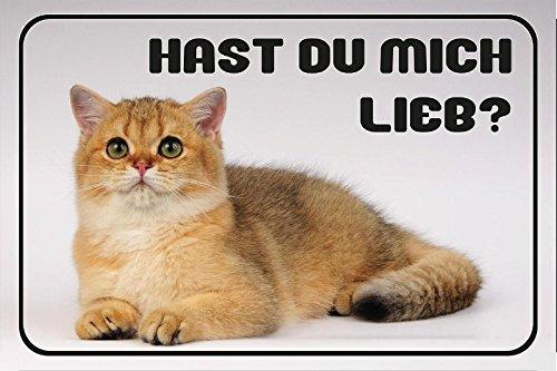 hast-du-mich-liebherr-kitten-gato-gato-niedlich-animales-barschild-metallschild-dekoschild