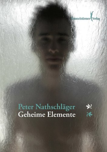 Peter Nathschläger: Geheime Elemente; Gay-Bücher alphabetisch nach Titeln