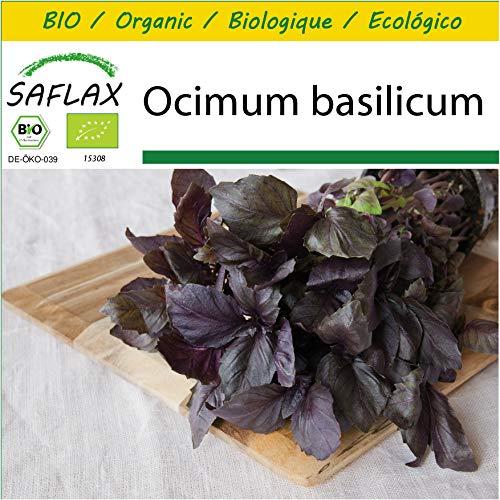 Bio - Ocimum