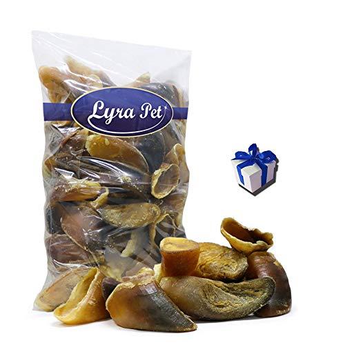 Lyra Pet® 100 Stück Rinderhufe Kalbshufe Hufe ungefüllt Hundefutter + Geschenk