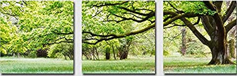 OBELLA New Wall Art Canvas Prints 3 Pieces ++Green Trees Grassland++ Framed With Inner Frames, Ready to Hang - 3 Panel Canvas Wall Art Multipart Canvas - Decorative Picture Modern Posters Oil Paintings Photo Image Prints on Canvas for Home Bedroom Living Room Office Wall Decor Christmas Gifts