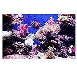 Jannyshop Qualle verdickte Aquarium-Hintergrund-dekorative Malerei einseitiger Digital-Druck-Aquarium-Hintergrund