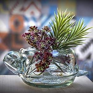 Glasmanufaktur Mitienda, Vase, Blumenschale Schildkröte, Glas, Dekoschale Klar, Mundgeblasenes Glas aus Mexiko, Geschenkidee