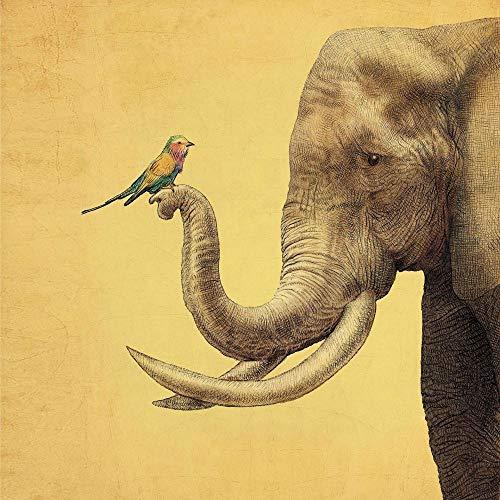 xkjymx Dekoration samt Tapisserie einfache Pflanze Flamingo wandbehang Strandtuch 085 Elefant und Vogel 180 Gramm super weiches Tuch 150 * - Elefant Vogel Kostüm
