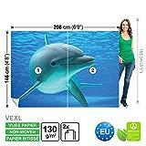 FORWALL Vlies Fototapete Tapete Vliestapete Dekoshop Delphin im Wasser Kinder ADW1103VEXL (208cm x 146cm) Photo Wallpaper Mural