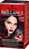 Brillance Intensiv-Color-Creme 888 Dunkle Kirsche, 3er Pack (3 x 143 ml)