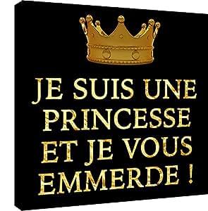 Je suis une Princesse et je vous emmerde - 30 cm x 30 cm - crée par le Dgedenice - Impression photo sur toile -impression trés haute qualité - Toile 290 Gr - Fabriqué en France
