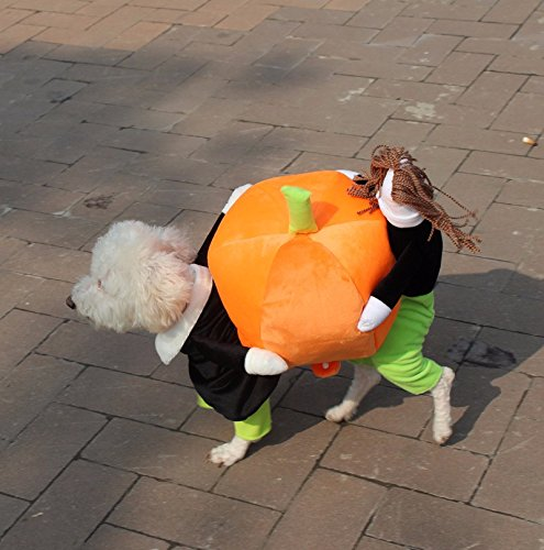 Kostüm Mai Cosplay (YiZYiF Hund tragen Kürbis Kostüm / Piratenkostüm komische Kleidung Katze Haustier Hundekostüm S-2XL Kürbis Kostüm)