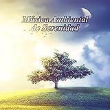 Música Ambiental de Serenidad: Musica Relajante para Meditación Budista y Reiki, Sonidos de la Naturaleza, Musicoterapia