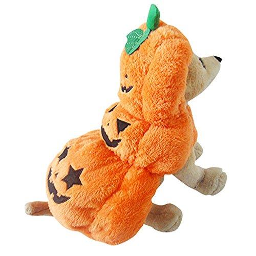 Febiona vestito costume cane abbigliamento forma di zucca halloween regalo l