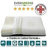 EVERGREENWEB MATERASSI & BEDS ⭐️⭐️⭐️⭐️⭐️ Evergreenweb - Cuscino 100% Lattice Doppia Onda per cervicale Tessuto aloe