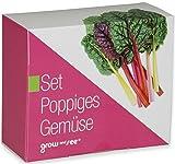 Das Geschenk Set Poppiges Gemüse - die ausgefallene Geschenkidee: Selbst säen, züchten und ernten - bringt Farbe in die Küche (originelle Geschenke)