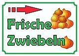 HB_Druck Verkaufsschild Schild Zwiebeln rechts A2 (420x594mm)