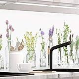 StickerProfis Küchenrückwand selbstklebend Premium KRÄUTERGLÄSER 1.5mm, Versteift, alle Untergründe, Hart PVC, 60 x 400cm